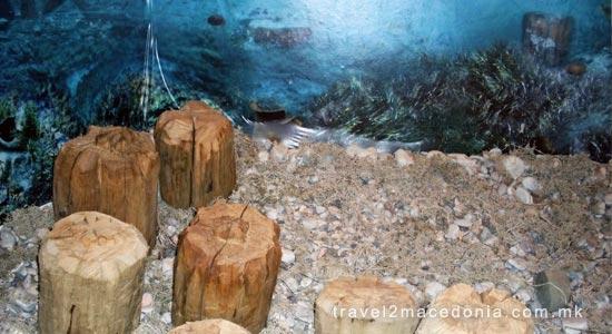 Museum on water -  Bay of Bones