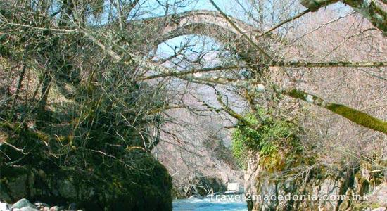 Deer leap bridge